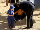 Prince William Duke of Cambridge watches as children play on a slide while he walks through the Pod Playground at the National Arboretum on April 24...