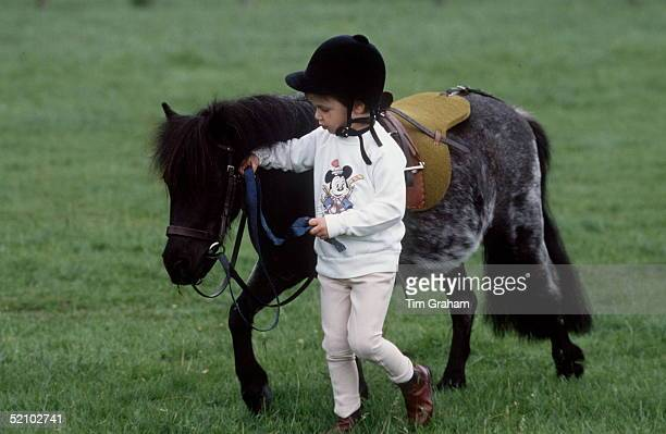 Prince William In The Grounds Of His Home Highgrove House With His Pony Called 'smokey'