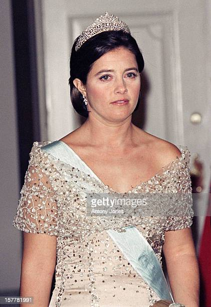 Princess Alexia Of Greece Attends Queen Margrethe Ii Of Denmark'S 60Th Birthday Celebrations In CopenhagenGala At Christiansborg Palace