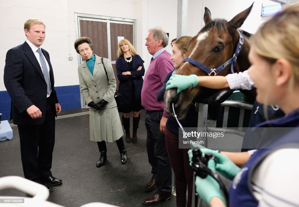 princess-anne-p2rincess-royal-observes-a-horse-gastroscopy-taking-as-picture-id859733058