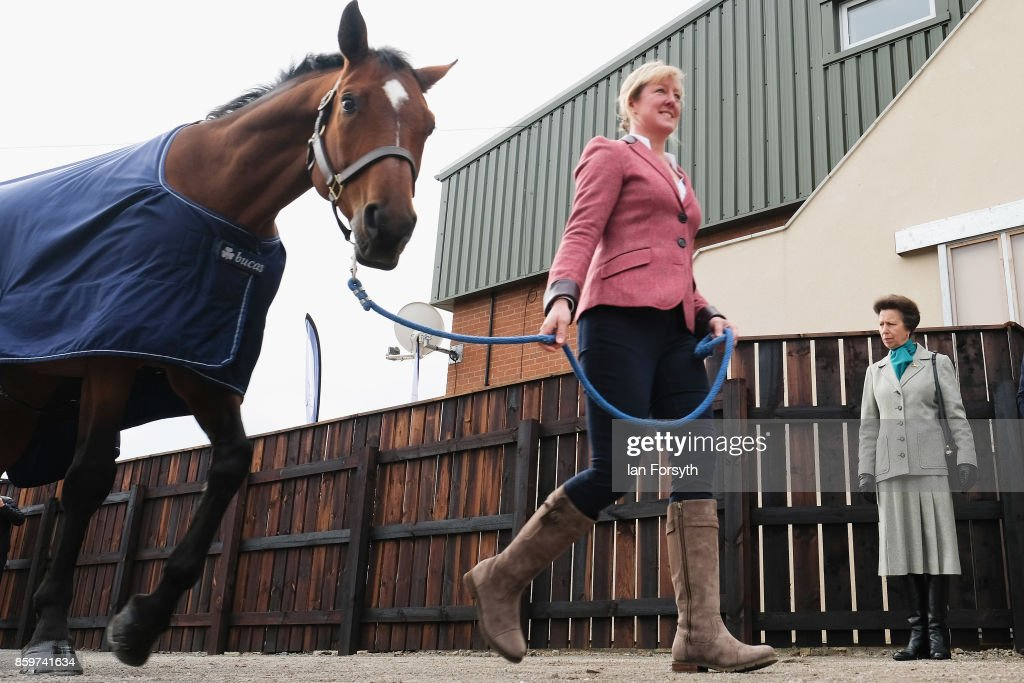 princess-anne-princess-royal-meets-olympic-three-day-eventing-silver-picture-id859741634