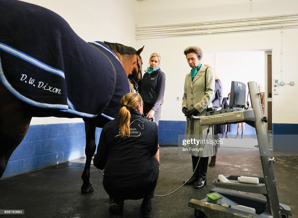 princess-anne-princess-royal-observes-a-leg-scan-taking-place-on-a-picture-id859732664