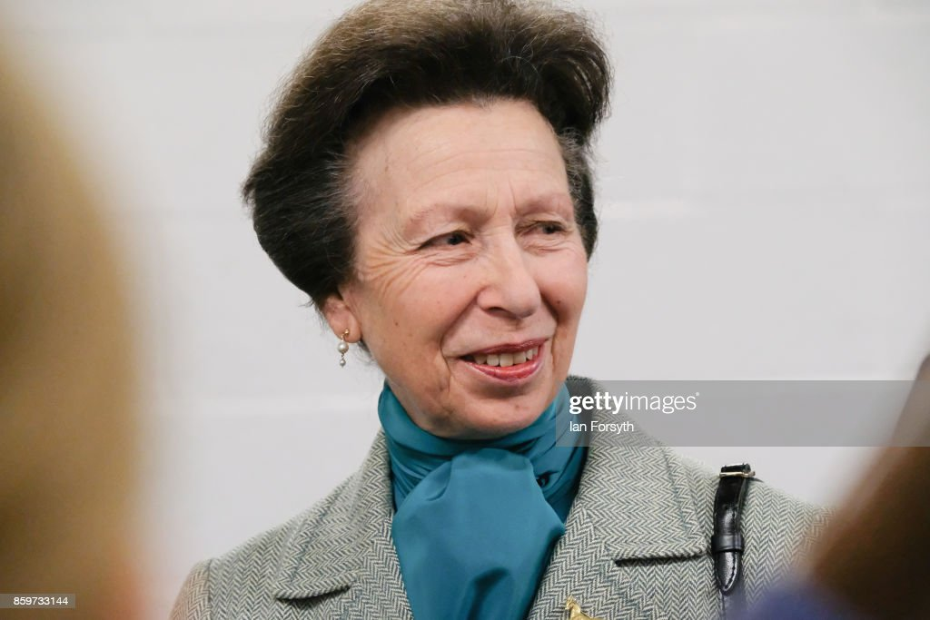 princess-anne-princess-royal-visits-the-hambleton-equine-clinic-on-picture-id859733144