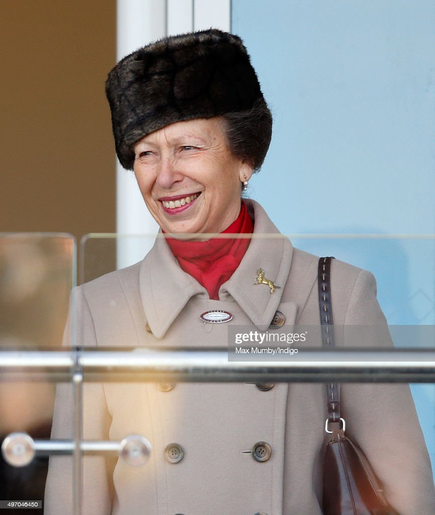 Princess Anne, The Princess Royal attends Countryside Day of The Open meeting at Cheltenham Racecourse on November 13, 2015 in Cheltenham, England.
