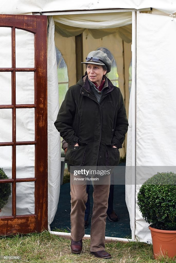 princess-anne-the-princess-royal-attends-the-whatley-manor-gatcombe-picture-id607322830