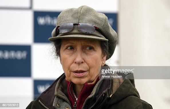 princess-anne-the-princess-royal-attends-the-whatley-manor-gatcombe-picture-id607332612