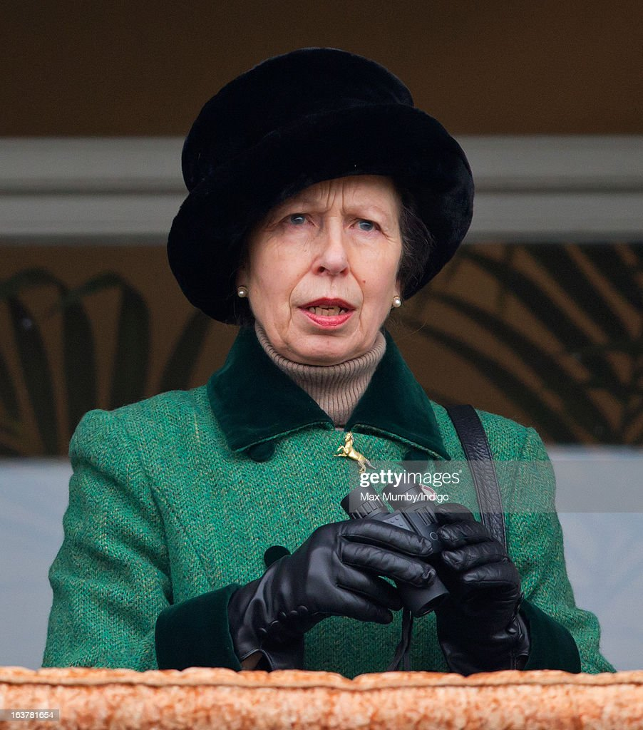 Princess Anne, The Princess Royal watches the racing as she attends Day 4 of The Cheltenham Festival at Cheltenham Racecourse on March 15, 2013 in London, England.