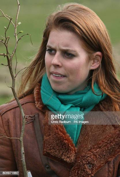 Princess Beatrice of York during a visit to The Woodland Trust at Heartwood Forest at Sandridge near St Albans Hertfordshire