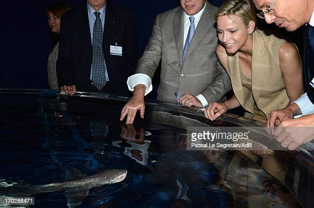 Princess Charlene of Monaco and Robert Calcagno look at a baby shark during a visit to a shark exhibition at the Oceanographic Museum on June 10 2013...