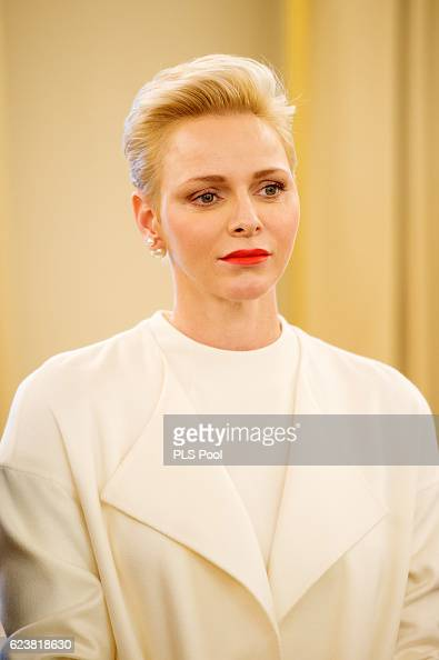 princess-charlene-of-monaco-attends-the-parcels-distribution-at-red-picture-id623818630