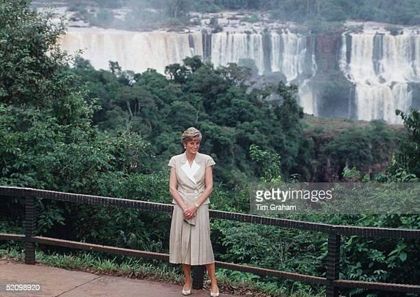 Princess Diana By Cataratas Waterfalls In Brazil