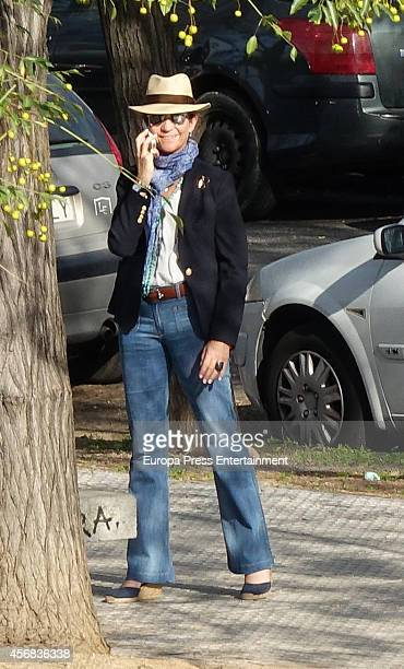 Princess Elena of Spain attends the national jumping horse race CSN4 Ruta de la Plata at Real Club Pineda on October 3 2014 in Seville Spain