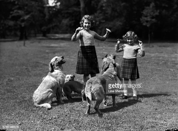 Princess Elizabeth and her sister Princess Margaret wearing kilts and feeding biscuits to dogs at the Royal Lodge Windsor UK June 1936