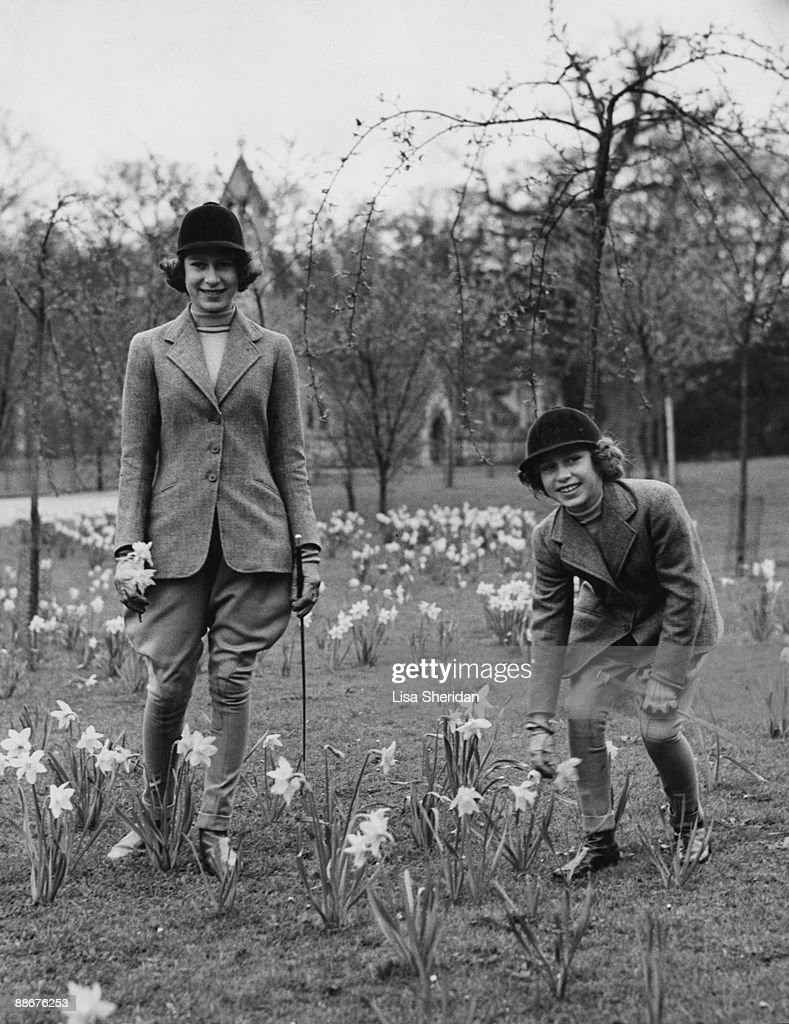Princess Elizabeth and her younger sister Princess Margaret Rose picking daffodils in the grounds of the Royal Lodge in Windsor Great Park April 1940