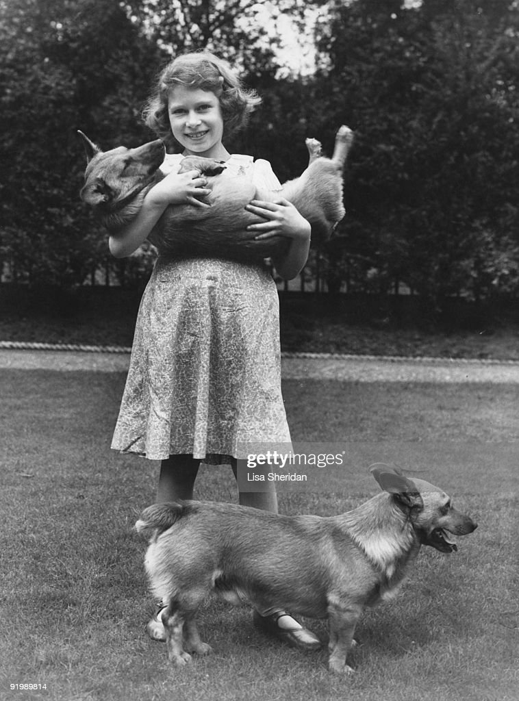 Princess Elizabeth (now Queen <a gi-track='captionPersonalityLinkClicked' href=/galleries/search?phrase=Elizabeth+II&family=editorial&specificpeople=67226 ng-click='$event.stopPropagation()'>Elizabeth II</a>) with two corgi dogs at her home at 145 Piccadilly, London, July 1936.