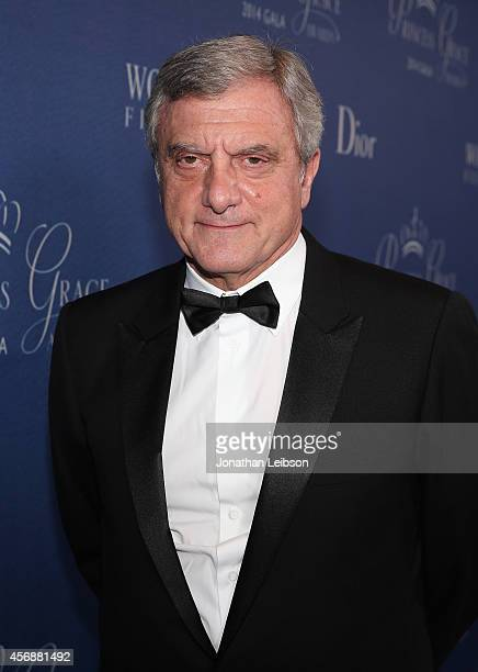 Princess Grace Awards Gala CoChair and President/CEO of Christian Dior Couture Sidney Toledano attends the 2014 Princess Grace Awards Gala with...