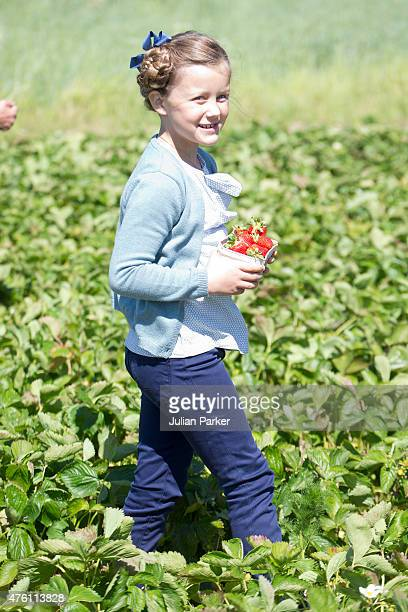 Princess Isabella of Denmark visits a Strawberry Farm during her first day of official engagements onThe Island Of Samso on June 6th 2015 in Samso...