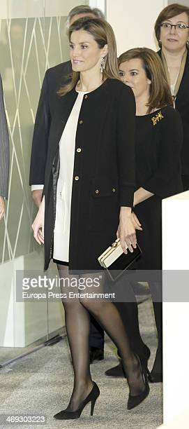 Princess Letizia of Spain attends the opening of the new headquarters of EFE press agency on February 13 2014 in Madrid Spain