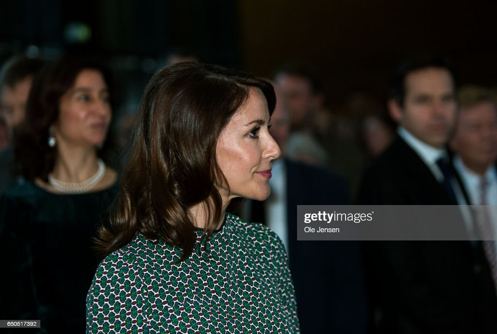 princess-marie-of-denmark-attends-the-opening-of-the-art-exhibition-picture-id650517392