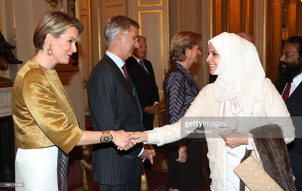 Princess Mathilde and Prince Philippe of Belgium meet Malaysian Ambassador Dato Zainnuddin Bin Yahya during a New Year reception at Palais de Bruxelles on January 9, 2013 in Brussel, Belgium.