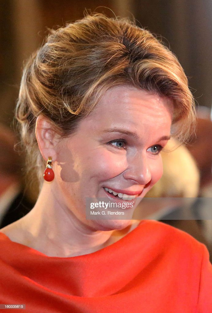 Princess Mathilde of Belgium assists a New Year Reception for Country Officials at the Royal Palace on January 29, 2013 in Brussels, Belgium.