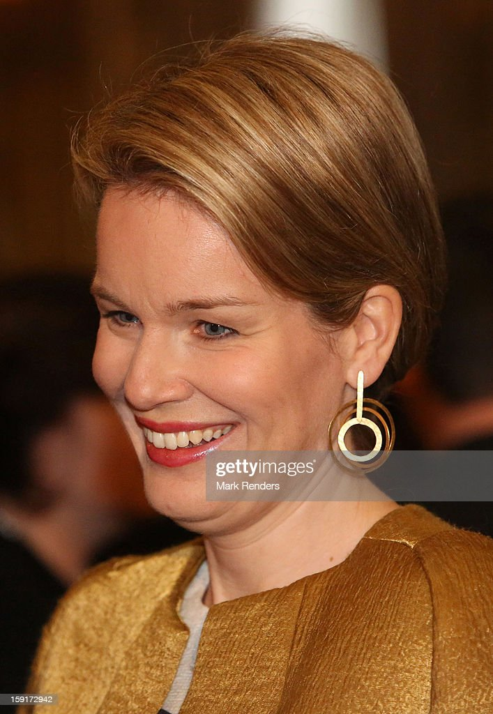 Princess Mathilde of Belgium attends a New Year Reception at Palais de Bruxelles on January 9, 2013 in Brussel, Belgium.