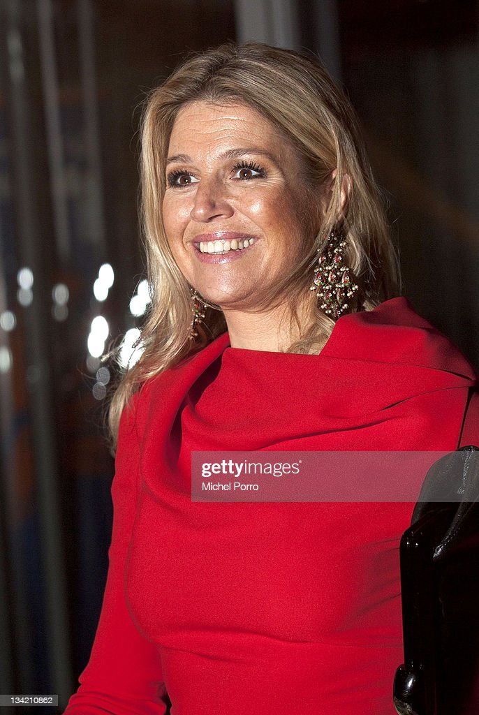 Princess Maxima of The Netherlands attends the Prince Bernhard Culture Fund Awards on November 28, 2011 in Amsterdam, Netherlands.