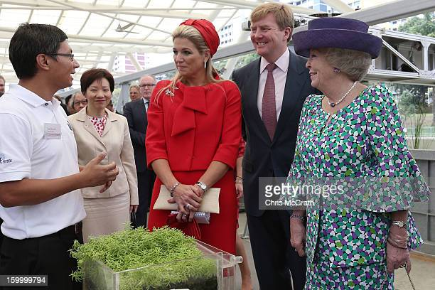 Princess Maxima Prince WillemAlexander and Queen Beatrix of the Netherlands tour the Van Kleef Centre which houses the NUS Aquatic Science centre on...