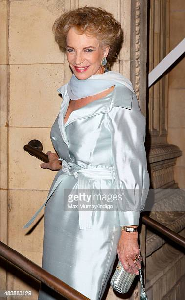 Princess Michael of Kent attends Ceiliuradh at the Royal Albert Hall during the State Visit by Irish President Michael D Higgins on April 10 2014 in...