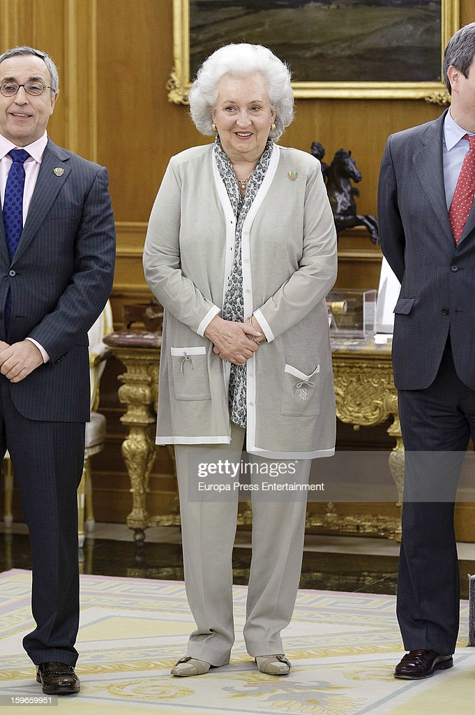 Princess Pilar of Borbon attends audiences to Spanish olympic delegation and receives Madrid bid files at Zarzuela Palace on January 17, 2013 in Madrid, Spain. Madrid is one of the three candidate cities to host the 2020 Olympics Games.