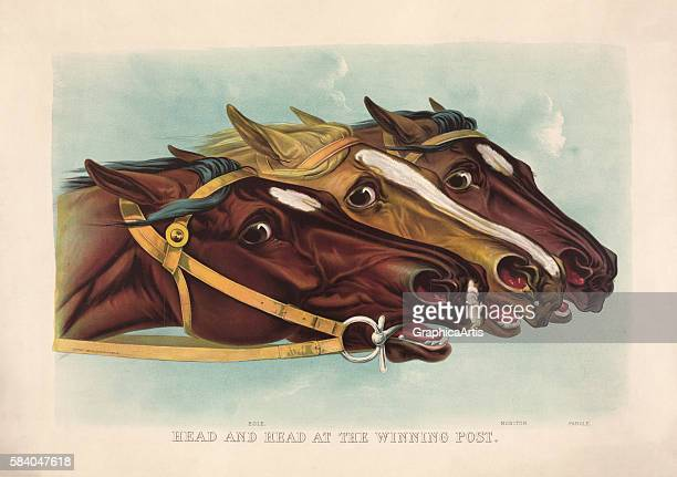 Print of three racehorses neckandneck at the finish line titled 'Head and Head at the Winning Post' 1884 Chromolithograph