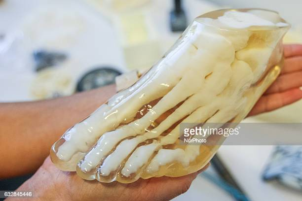 3D printed medical human foot model is seen in Pomeranian Science and Technology Park on 27 January 2017 in Gdynia Poland During the conference...