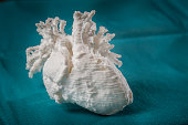 3D printed model of a childs heart