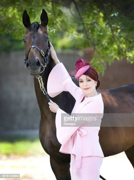 MELBOURNE VIC Priscilla Presley poses with 'Pinot' ahead of Oaks Day at the Gai Waterhouse Stables in Melbourne Victoria