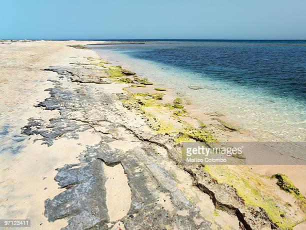 Pristine beach, Red Sea