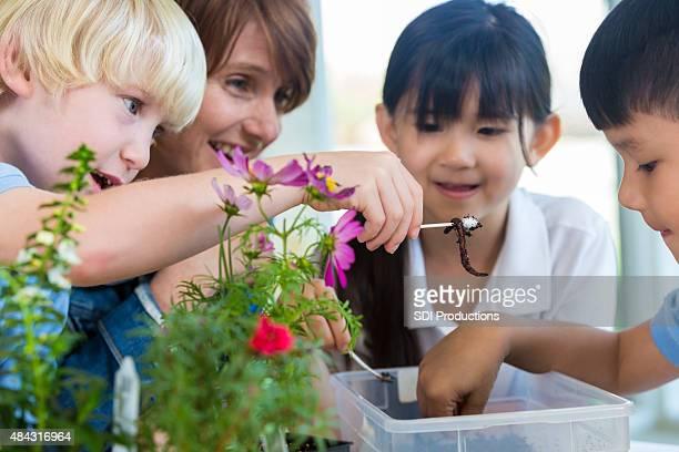Private Grundschule Schüler und Lehrer studieren earth science