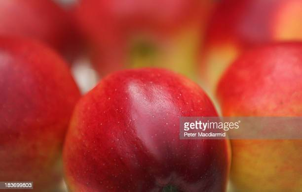 Prize winning apples are displayed at the Royal Horticultural Society Harvest Festival Show on October 9 2013 in London England The nation's...