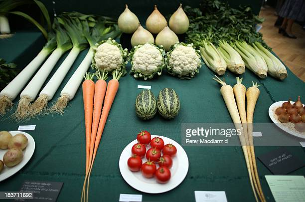 Prize winning vegetables are displayed at the Royal Horticultural Society Harvest Festival Show on October 9 2013 in London England The nation's...