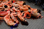 ESP: One Hundred Naked Activists Protest In Barcelona Against The Fur Industry