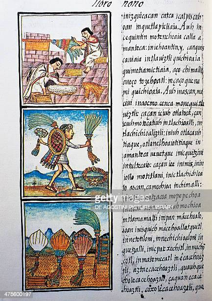 Processing feathers text in Nahuati from the facsimile of the manuscript General History of the Things of New Spain also known as the Florentine...