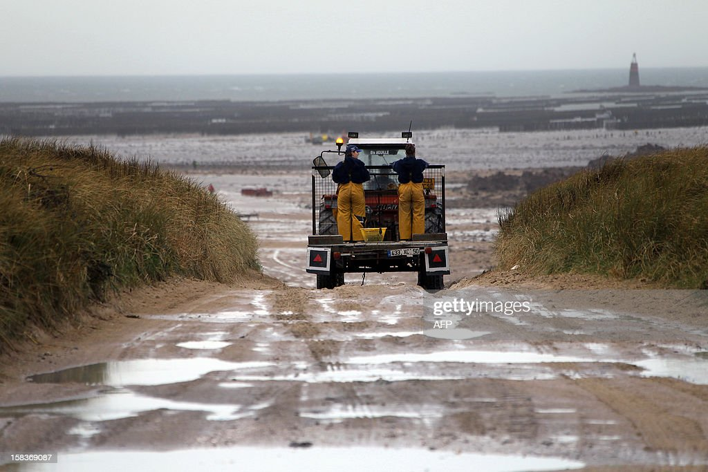 Producers of oysters are on their way to work on December 14, 2012, in Agon-Coutainville, northwestern France.