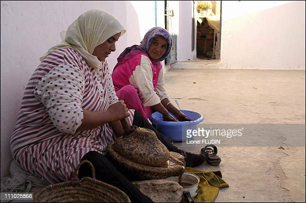 Production of argan oil in the Essaouira area of Morocco The almond is crushed into a paste in Essaouira on January 17th 2005