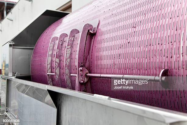 Producción de vino en bodega rojo