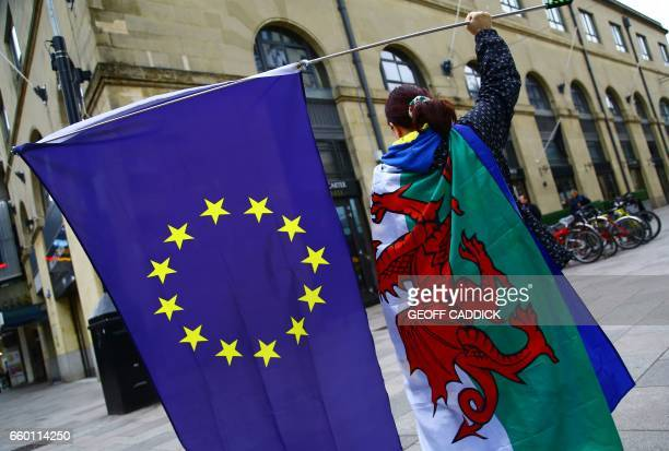ProEuropean Union demonstrators wave EU flags whilst draped in a red dragon flag the national flag of Wales as they protest against the triggering of...