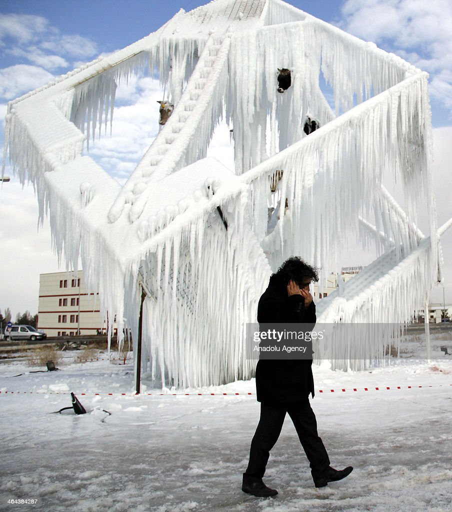 Prof. Dr. Mehmet Kavukcu from Erzurum Ataturk University, College of Arts performs art of ice sculpture with 14 cattle's head to take attention to violence at University campus, in Erzurum, Turkey on January 22, 2014.