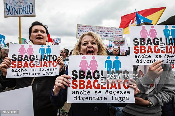 Profamilies demonstrators and associations take part in a rally at Circus Maximus in defense of marriage and the traditional family in the eve of a...