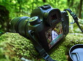 Professional DSLR camera on mossy boulders in a forest