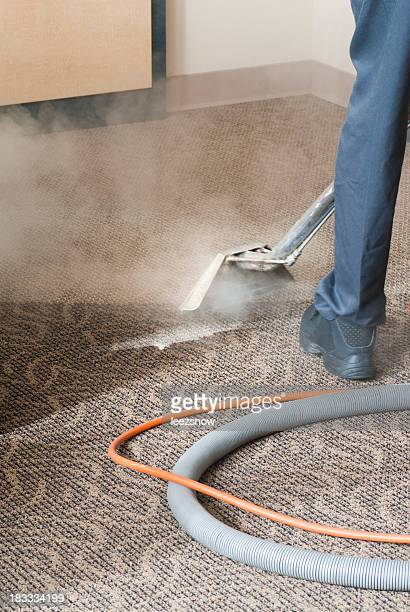 Professional Carpet Cleaner - Steam Cleaning