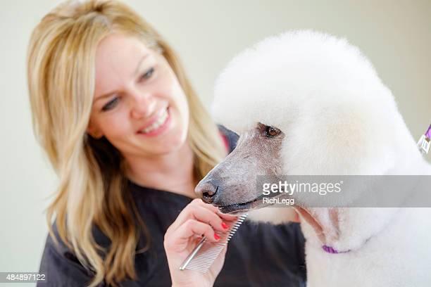 Professionelle Hund Groomer in einem Haustier-Salon