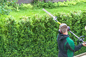 Professional hedges cutting with gasoline telescopic hedge trimmer.